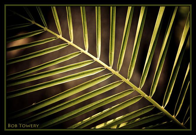 Symmetry-9739