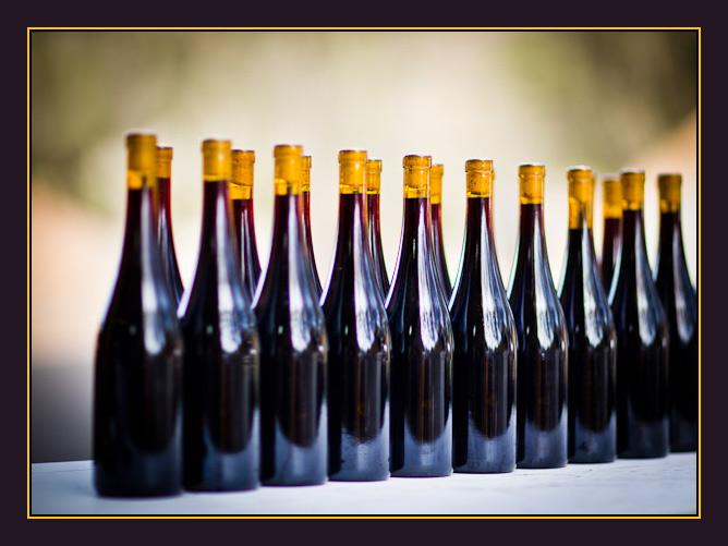 Wine-0504