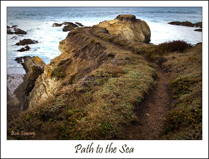 Path-1356