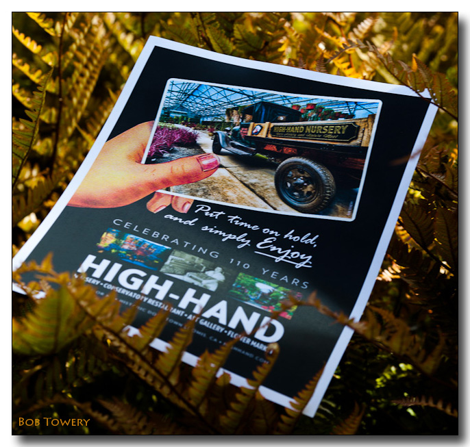 Highhand-4153
