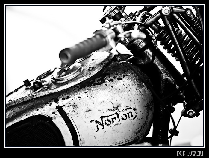 Norton-6941