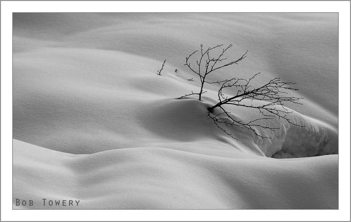 Snow-0408-2