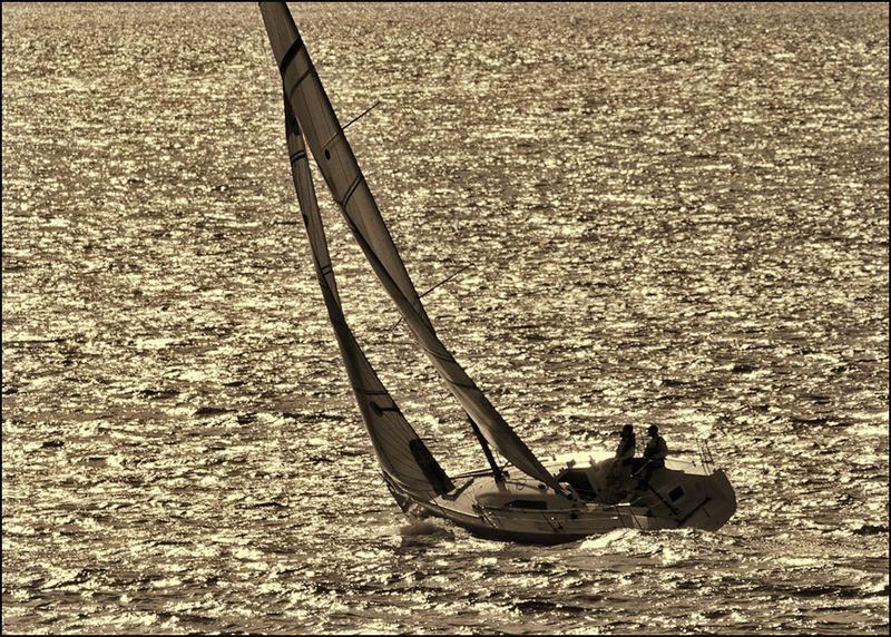 Sailboat-8058