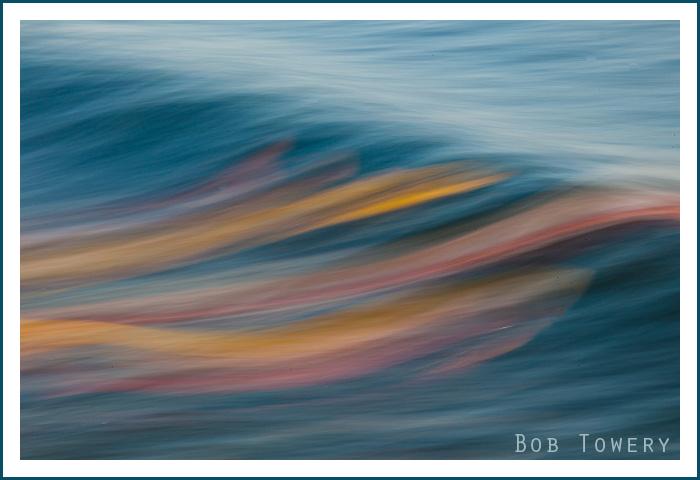 Bodysurfers-1787
