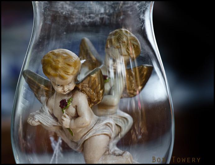 Angels-7281
