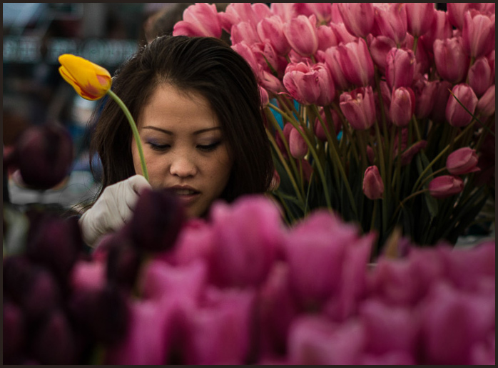 Flowergirl-1044466