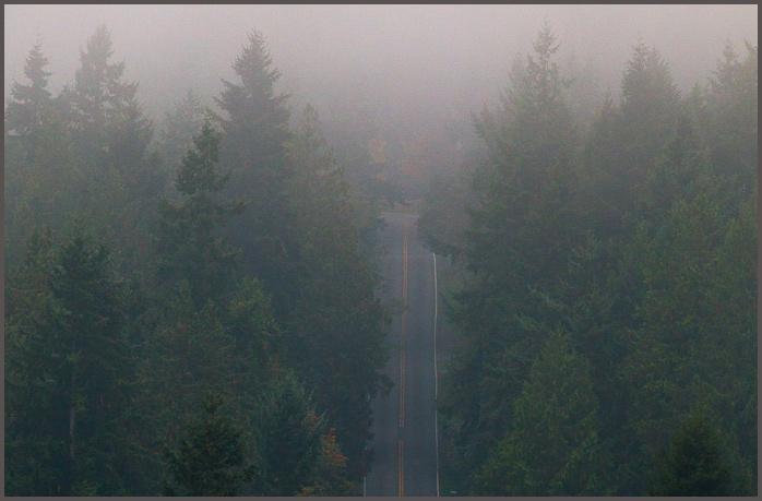 Fog-0753