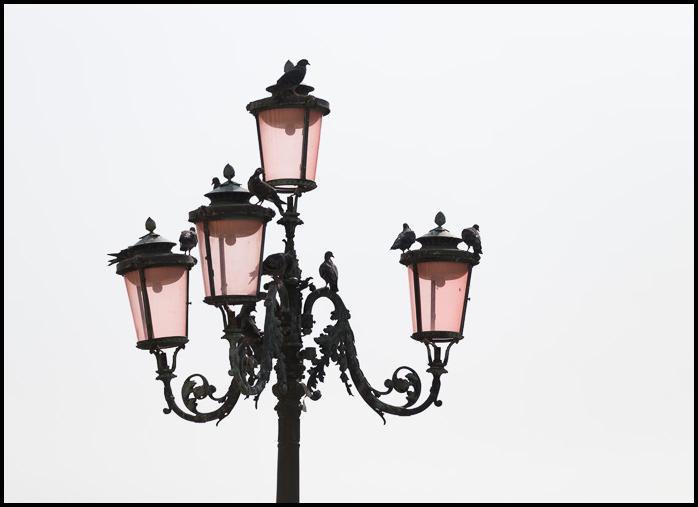 Venice-lamp-8551