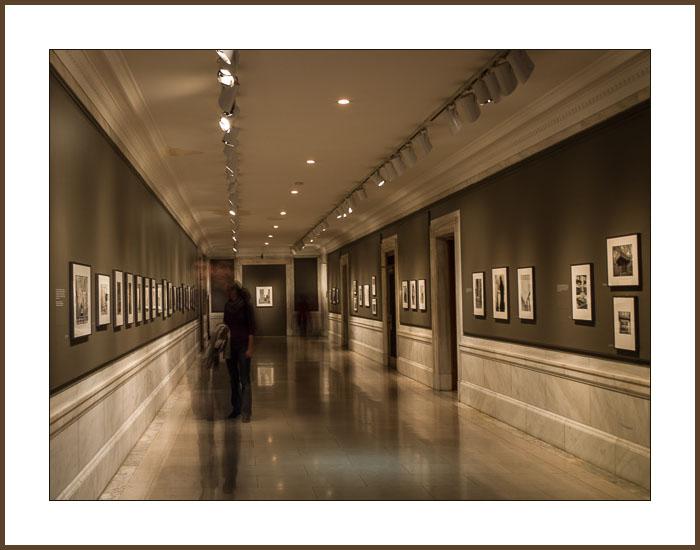 Gallery-1043145