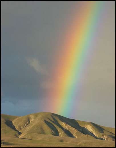 Rainbow-6254