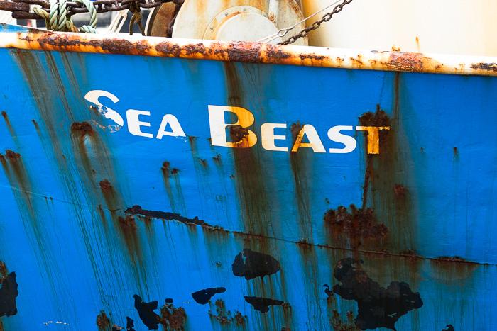 Beast-4212