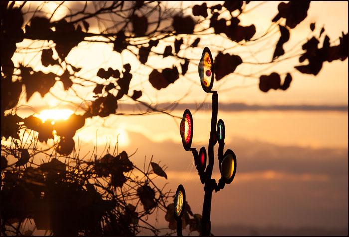 Sunset-4851